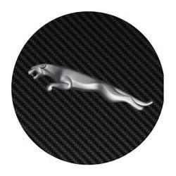 Jaguar imitation carbone