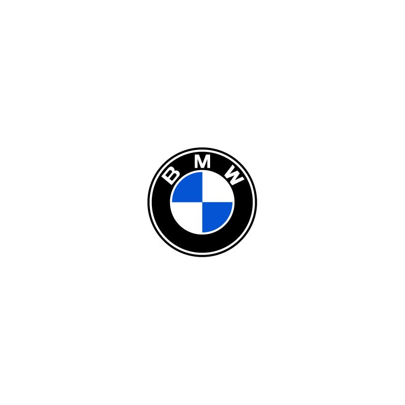 BMW logo original